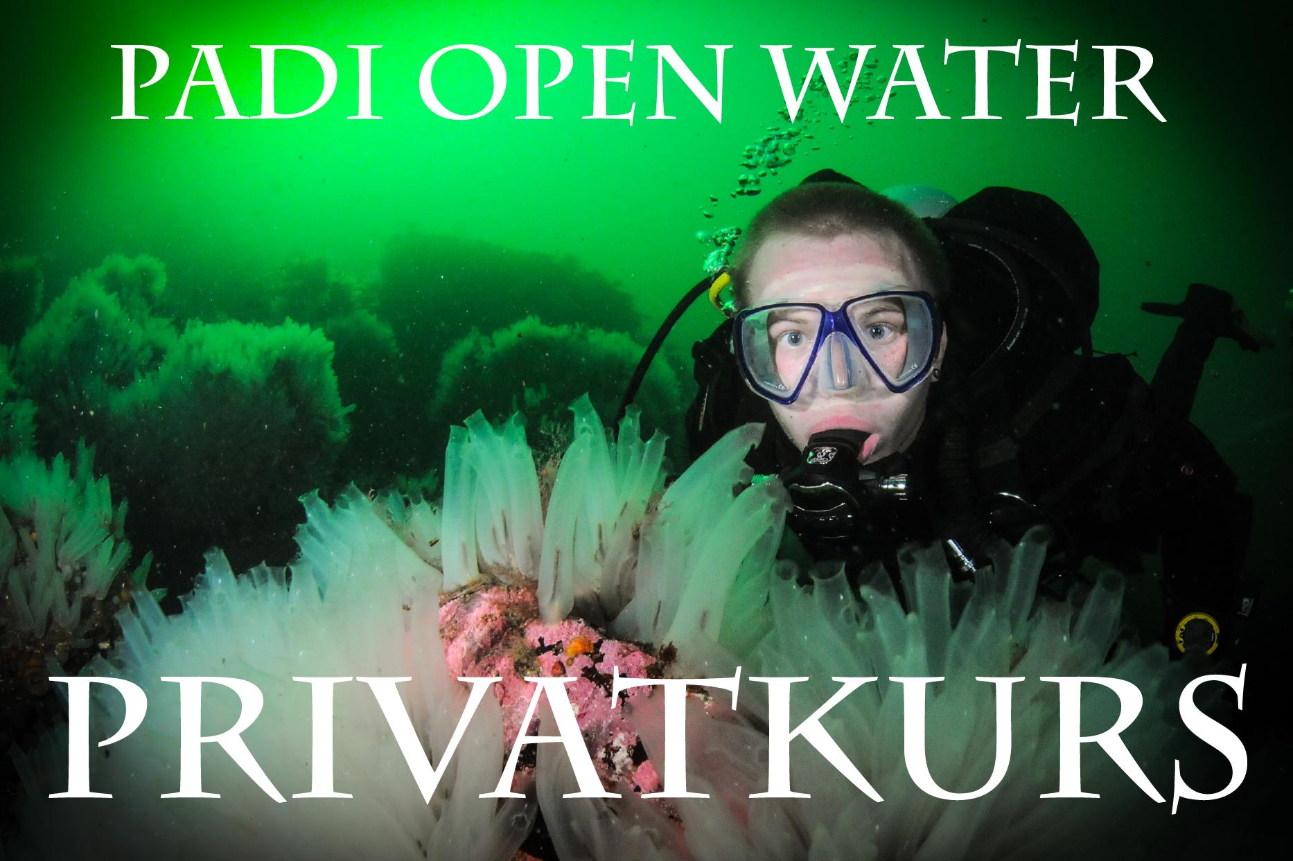 PADI OPEN WATER DIVER - Privatkurs