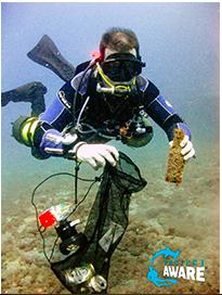 Lær og bli mer bevist på forsøplingen som skjer i havet og hvordan gjøre noe med det!