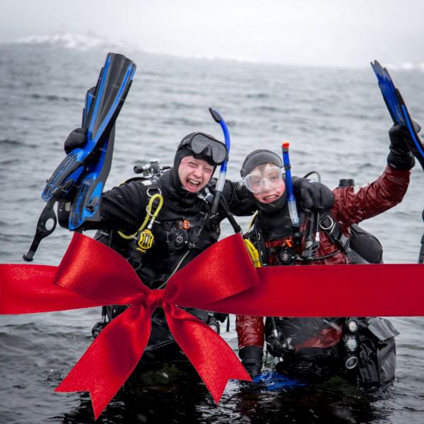 Gavekort Open Water Diver (OWD)