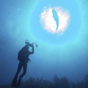 PADI Digital Underwater Photographer Specialty