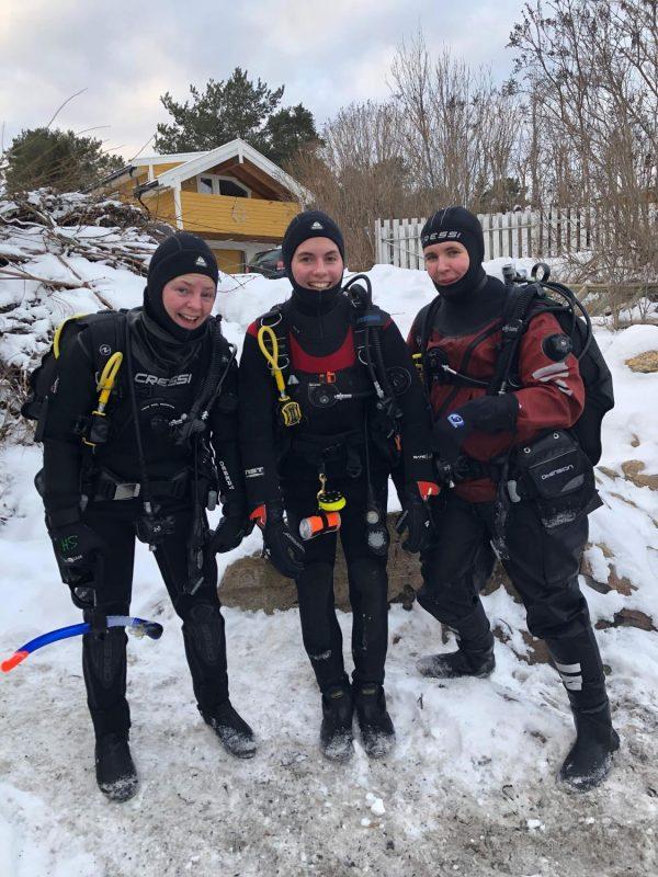 Open Water Diver, kun teori